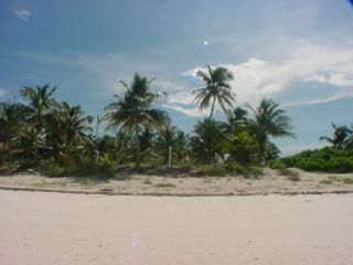 Eleuthera Bahamas beachfront villas for sale