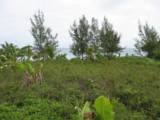 Eleuthera Bahamas oceanfront real estate