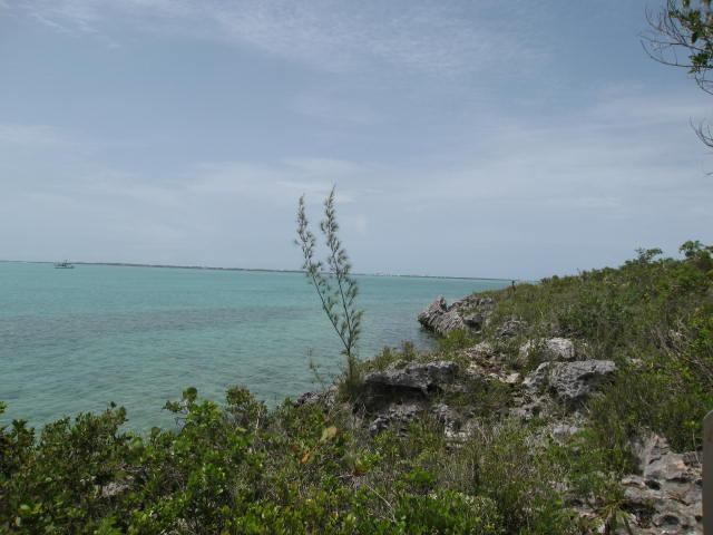 North Eleuthera Bahamas real estate