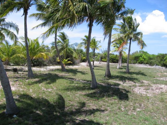 bahamas private islands for sale