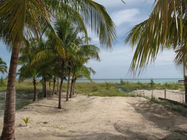 Eleuthera Bahamas beach lots for sale