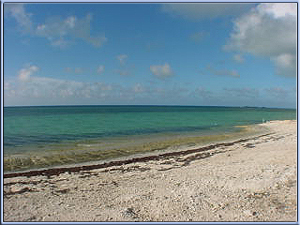 Eleuthera Bahamas oceanfront properties for sale